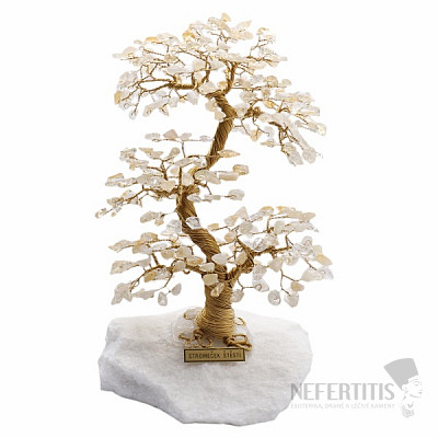 Stromeček štěstí citrín A4