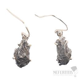Meteorit Campo del Cielo náušnice stříbro Ag 925 E373