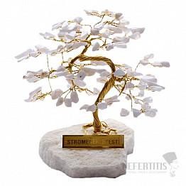 Stromeček štěstí chalcedon R4