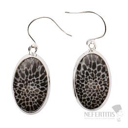 Korál fosilní Stingray náušnice stříbro Ag 925 E2