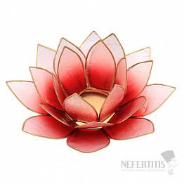 Svícen lotos růžovočervený