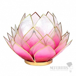 Svícen lotos růžovobílý Extra